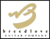 Breedlove Guitars - Extraordinary Experience!